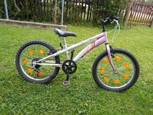 Bicikl MTB 20