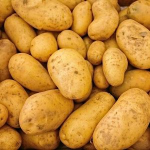 Krompir krtola