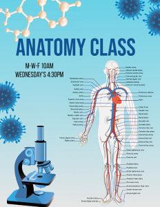 Instrukcije iz Anatomije