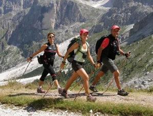 Planinarski stapovi za planinarenje nordijsko hodanje