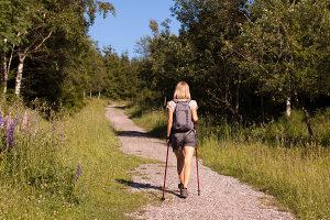 Stapovi za planinarenje hodanje dva komada par 135cm