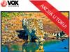 VOX TELEVIZOR,40DSA311B D-LED TV 40″ , FULL HD