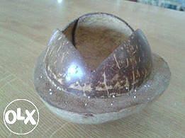 Zdjela od kokosovog oraha