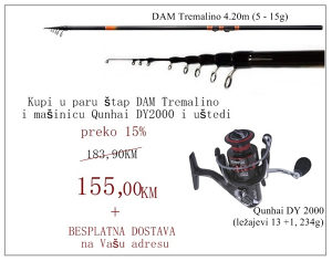 AKCIJA - Štap DAM 4.2m + mašinica(za lov na plovak)