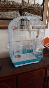 Kavez za ptice 1