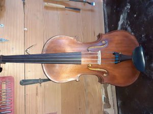Viola 38.8 mm