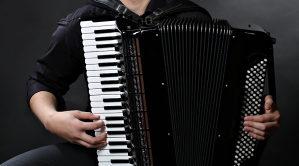 Harmonikaš. Sviram harmoniku samostalno ili uz bend.