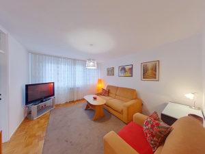 500906 Lijepo namješten i adaptiran jednosoban stan