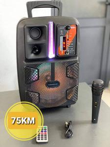 Bluetooth zvucnik sa mikrofonom i daljinskim 8 inci