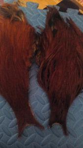 Dva skalpa