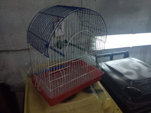 Kavez za ptice i papagaje