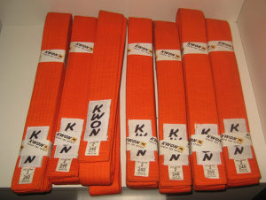 Narandžasti karate pojas KWON