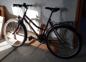 Bicikl Montana zenski