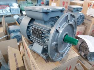 ELEKTRO MOTOR 0.75kW 2900 obrt. MONOFAZNI