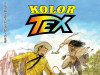 Tex Kolor 12 / STRIP AGENT