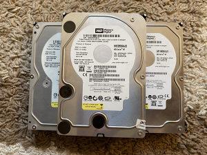 Hard disk western digital HDD WD 160GB SATA
