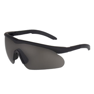 Naočale RAPTOR Swisseye