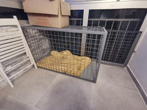 Kavez za psa - kavez za ljubimca