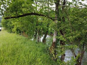 Zemljište na rijeci