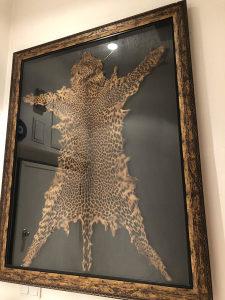 Koža leoparda