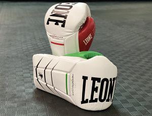Rukavice za boks i kikboks REVOLUTION 12OZ