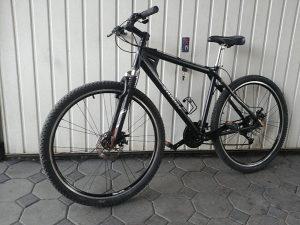 Bicikl Specilazet 29 incha