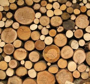 Posao - Potrebni radnici za masinsko cijepanje drva