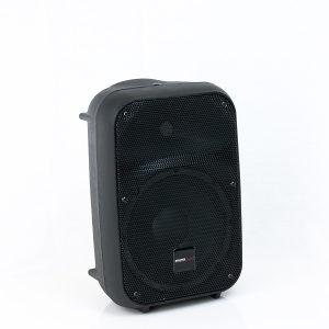 PA zvučna kutija 8'' pasivna Master Audio SB200
