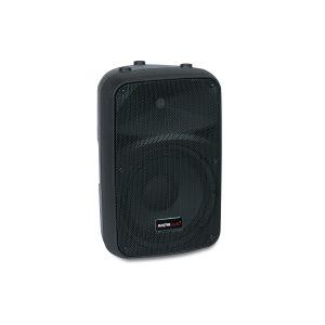 PA zvučna kutija 10'' pasivna Master Audio SB250