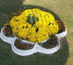 Kalup  cvijetnjak cvijece betonska betonsku galanterija