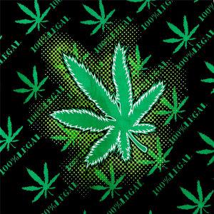 Crna i cannabis marihuana marama bandana maska